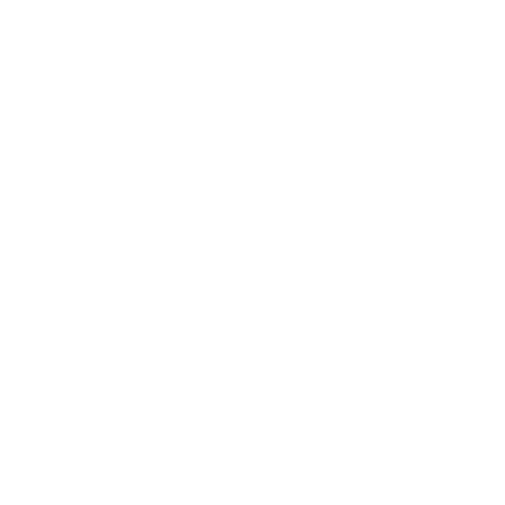 Steth Icon